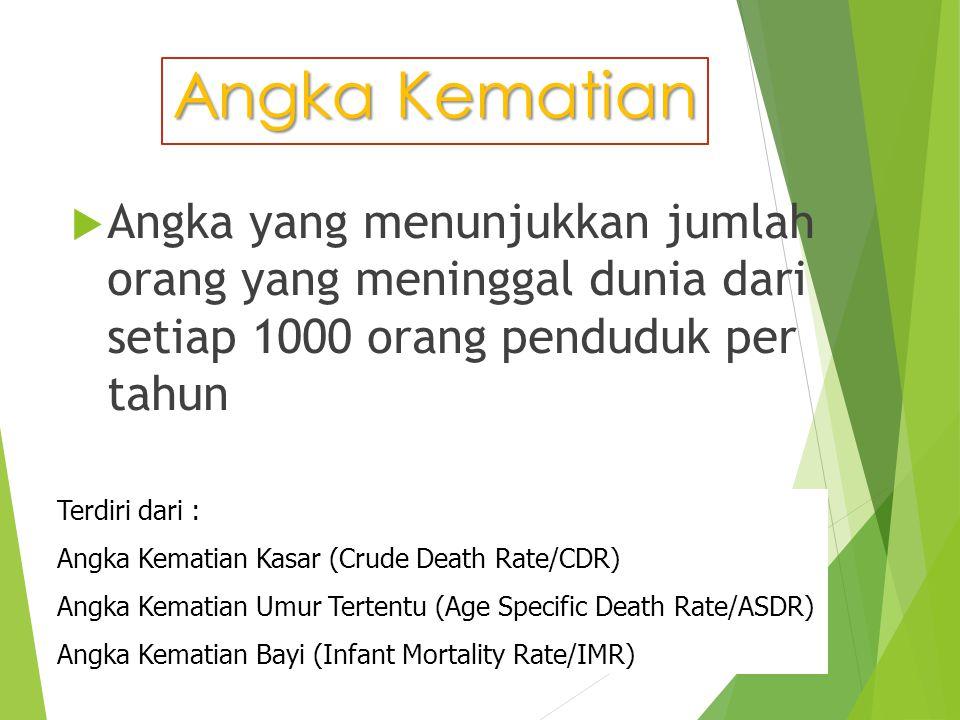 Terdiri dari : Angka Kematian Kasar (Crude Death Rate/CDR) Angka Kematian Umur Tertentu (Age Specific Death Rate/ASDR) Angka Kematian Bayi (Infant Mor