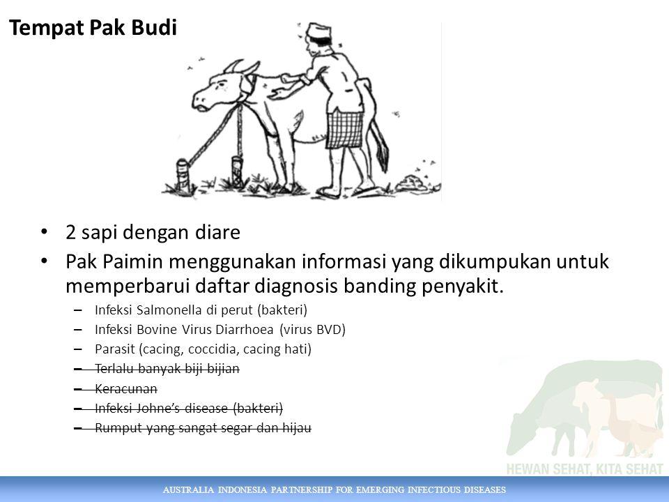 AUSTRALIA INDONESIA PARTNERSHIP FOR EMERGING INFECTIOUS DISEASES 2 sapi dengan diare Pak Paimin menggunakan informasi yang dikumpukan untuk memperbarui daftar diagnosis banding penyakit.