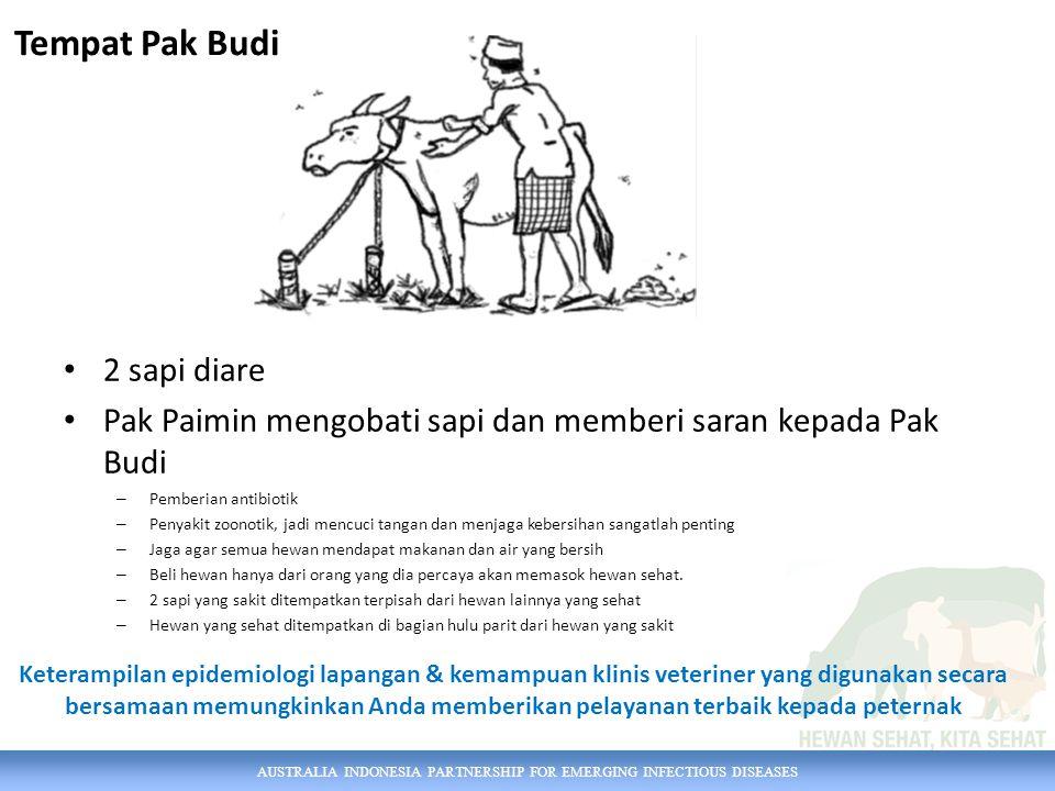 AUSTRALIA INDONESIA PARTNERSHIP FOR EMERGING INFECTIOUS DISEASES 2 sapi diare Pak Paimin mengobati sapi dan memberi saran kepada Pak Budi – Pemberian