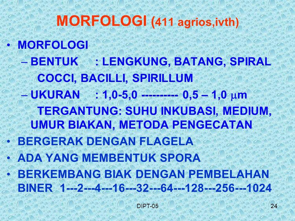 24DIPT-0524 MORFOLOGI ( 411 agrios,ivth) MORFOLOGI –BENTUK : LENGKUNG, BATANG, SPIRAL COCCI, BACILLI, SPIRILLUM –UKURAN: 1,0-5,0 ---------- 0,5 – 1,0