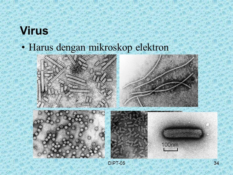 34DIPT-0534 Harus dengan mikroskop elektron Virus