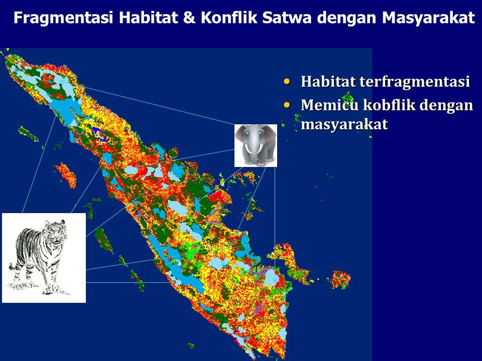 Fragmentasi Habitat & Konflik Satwa dengan Masyarakat Habitat terfragmentasi Habitat terfragmentasi Memicu kobflik dengan masyarakat Memicu kobflik de