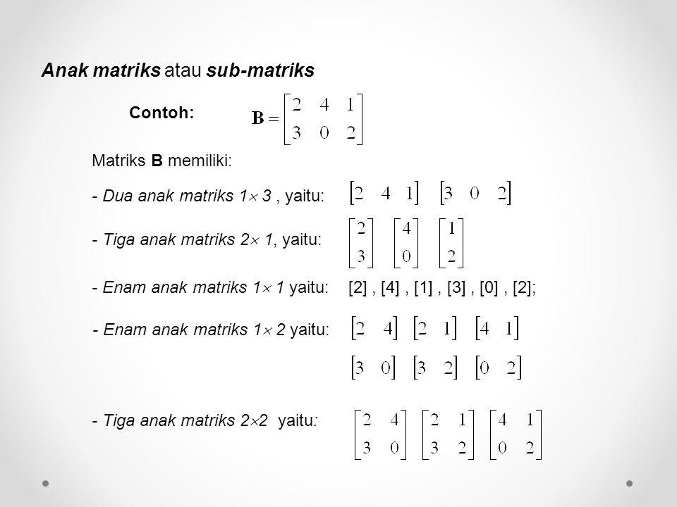 Anak matriks atau sub-matriks - Dua anak matriks 1  3, yaitu: - Tiga anak matriks 2  1, yaitu: - Enam anak matriks 1  1 yaitu: [2], [4], [1], [3], [0], [2]; - Enam anak matriks 1  2 yaitu: - Tiga anak matriks 2  2 yaitu: Contoh: Matriks B memiliki: