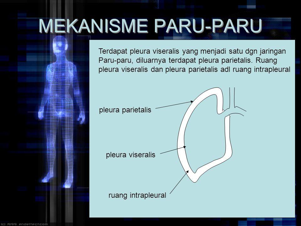 MEKANISME PARU-PARU Terdapat pleura viseralis yang menjadi satu dgn jaringan Paru-paru, diluarnya terdapat pleura parietalis. Ruang pleura viseralis d
