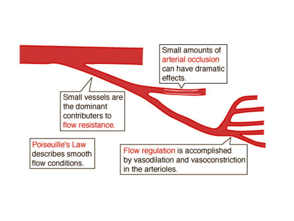TEKANAN DARAH SISTEMIK 120 95 80 Sistolik Diastolik Tek rata-rata t P TEKANAN ARTERI PARU-PARU 30 20 10 Sistolik Diastolik Tek rata-rata t P Tekanan rata-rata Menentukan banyaknya darah yang mengalir tiap satuan waktu