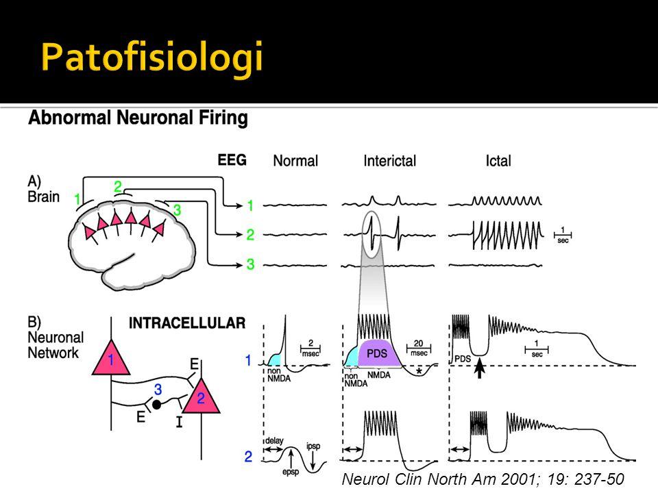 Principles of neuronal science 2000.h..935-40