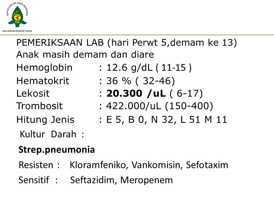 PEMERIKSAAN LAB (hari Perwt 5,demam ke 13) Anak masih demam dan diare Hemoglobin : 12.6 g/dL Hemoglobin : 12.6 g/dL ( 11-15 ) Hematokrit: 36 % ( 32-46
