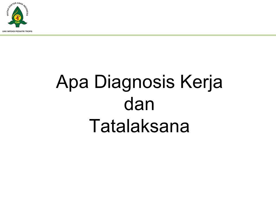 Diagnosis Kerja : – SIRS curiga SEPSIS – Diare akut tanpa dehidrasi Tatalaksana : – Infus Kaen 3 B 1200/50/12 tts/m – Injeksi Seftazidim 300 mg setiap 8 jam – Po : - Zn So4 + oralit - Parasetamol 1 sendok obat setiap demam > 38 ( tiap 4 jam ) Program : Kultur darah, urin dan feses Konsul THT ( cari fokal infeksi) Periksa serologi Tifoid( Ig M Salmonella) dan Leptospira ( Lepto Dry Dot )