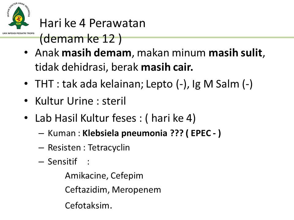 Hari ke 4 Perawatan (demam ke 12 ) Anak masih demam, makan minum masih sulit, tidak dehidrasi, berak masih cair. THT : tak ada kelainan; Lepto (-), Ig