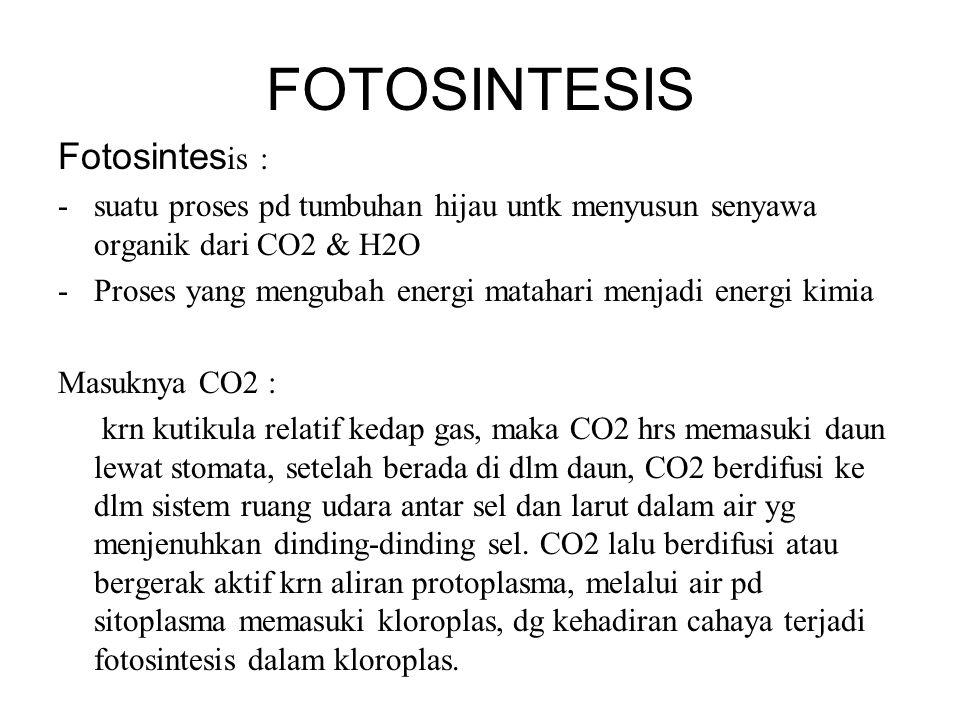 FOTOSINTESIS Fotosintes is : -suatu proses pd tumbuhan hijau untk menyusun senyawa organik dari CO2 & H2O -Proses yang mengubah energi matahari menjad