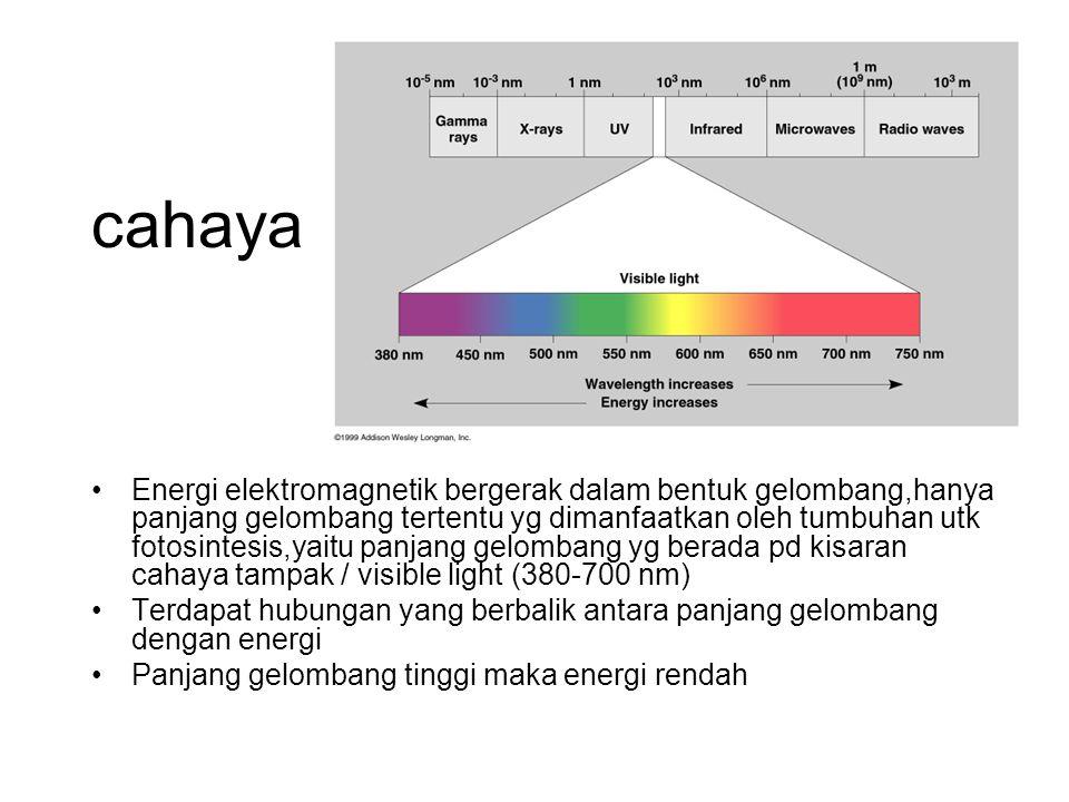 cahaya Energi elektromagnetik bergerak dalam bentuk gelombang,hanya panjang gelombang tertentu yg dimanfaatkan oleh tumbuhan utk fotosintesis,yaitu pa