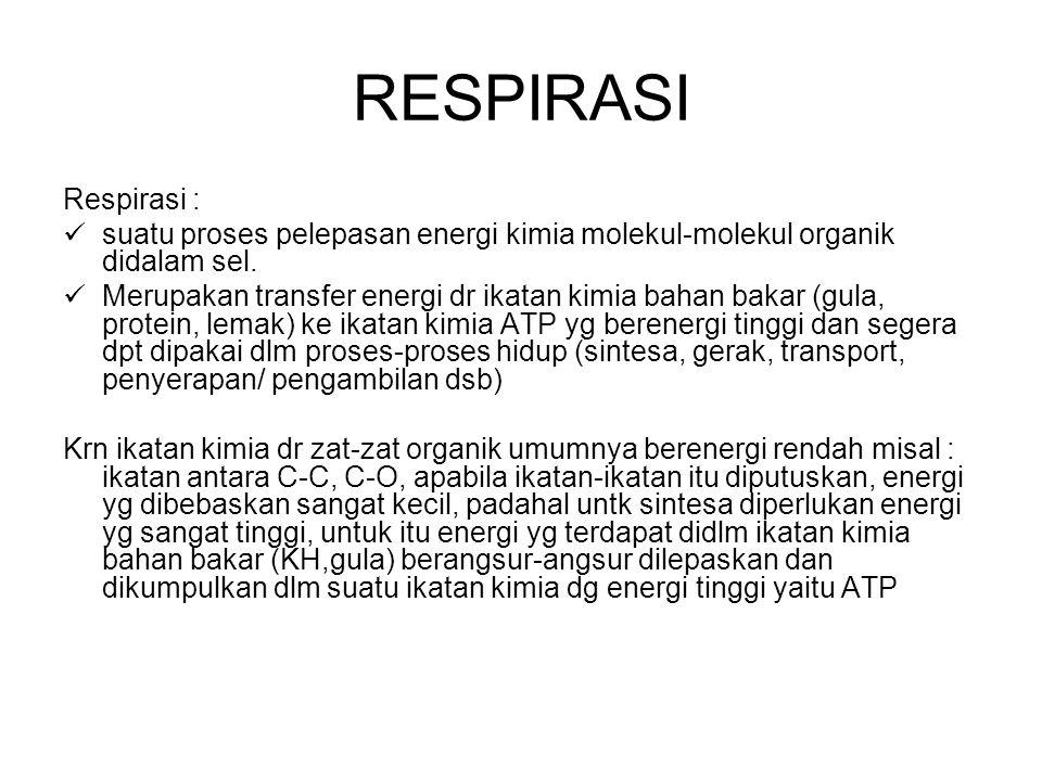 RESPIRASI Respirasi : suatu proses pelepasan energi kimia molekul-molekul organik didalam sel. Merupakan transfer energi dr ikatan kimia bahan bakar (