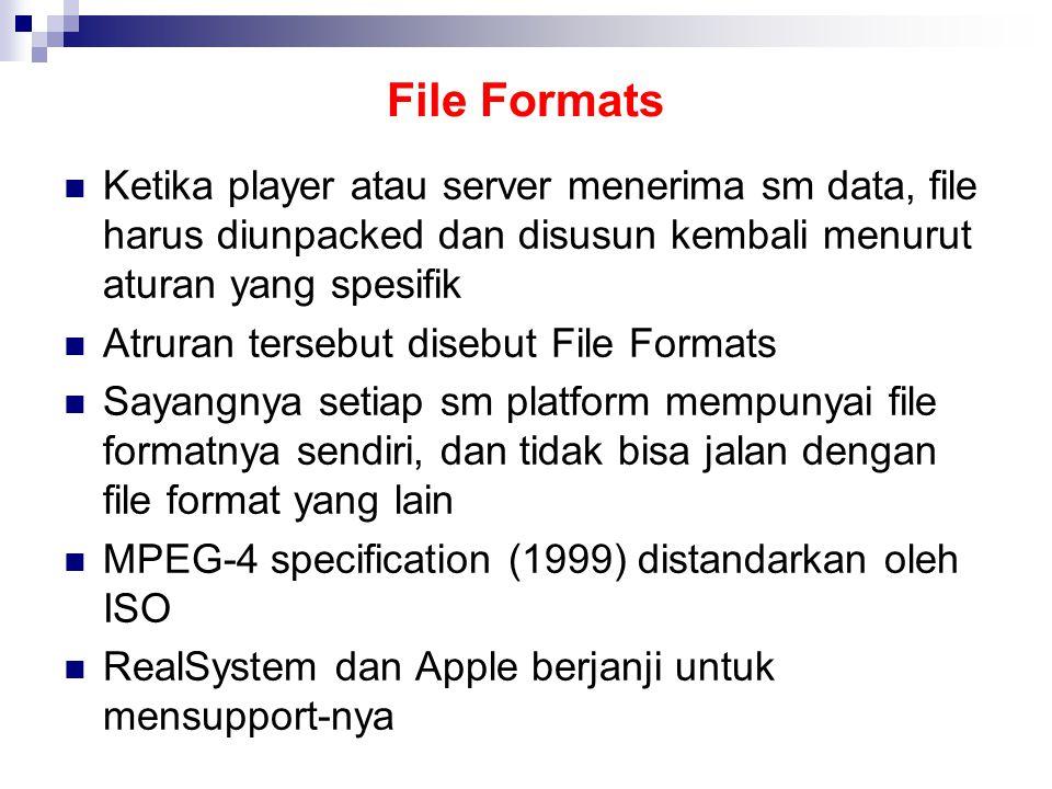 File Formats Ketika player atau server menerima sm data, file harus diunpacked dan disusun kembali menurut aturan yang spesifik Atruran tersebut disebut File Formats Sayangnya setiap sm platform mempunyai file formatnya sendiri, dan tidak bisa jalan dengan file format yang lain MPEG-4 specification (1999) distandarkan oleh ISO RealSystem dan Apple berjanji untuk mensupport-nya