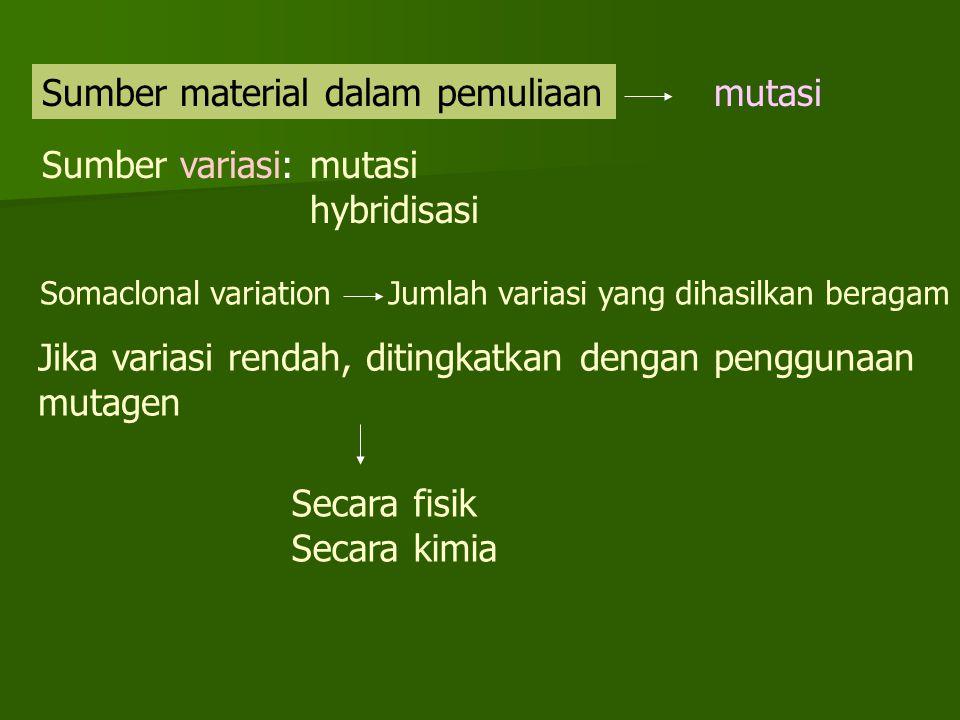 Sumber material dalam pemuliaanmutasi Sumber variasi: mutasi hybridisasi Somaclonal variationJumlah variasi yang dihasilkan beragam Jika variasi rendah, ditingkatkan dengan penggunaan mutagen Secara fisik Secara kimia
