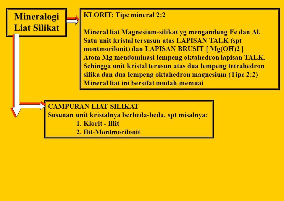 Mineralogi Liat Silikat Tipe mineral 2:1 Tidak Memuai (ILLIT) Ukurannya berada di antara montmorilonit dan kaolinit Muatan negatifnya terutama pd lemp