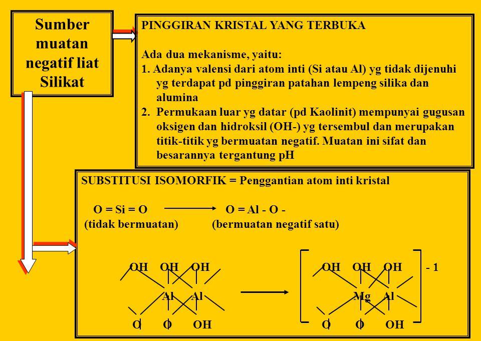 SIFAT Koloidal MINERAL LIAT PENJERAPAN DAN PERTUKARAN ION Penjerapan kation dipengaruhi oleh: 1. Jenis kation 2. Konsentrasi ion-ion 3. Sifat anion ya