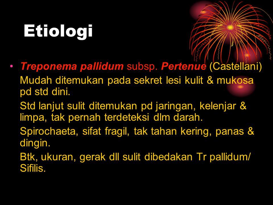 Etiologi Treponema pallidum subsp. Pertenue (Castellani) Mudah ditemukan pada sekret lesi kulit & mukosa pd std dini. Std lanjut sulit ditemukan pd ja