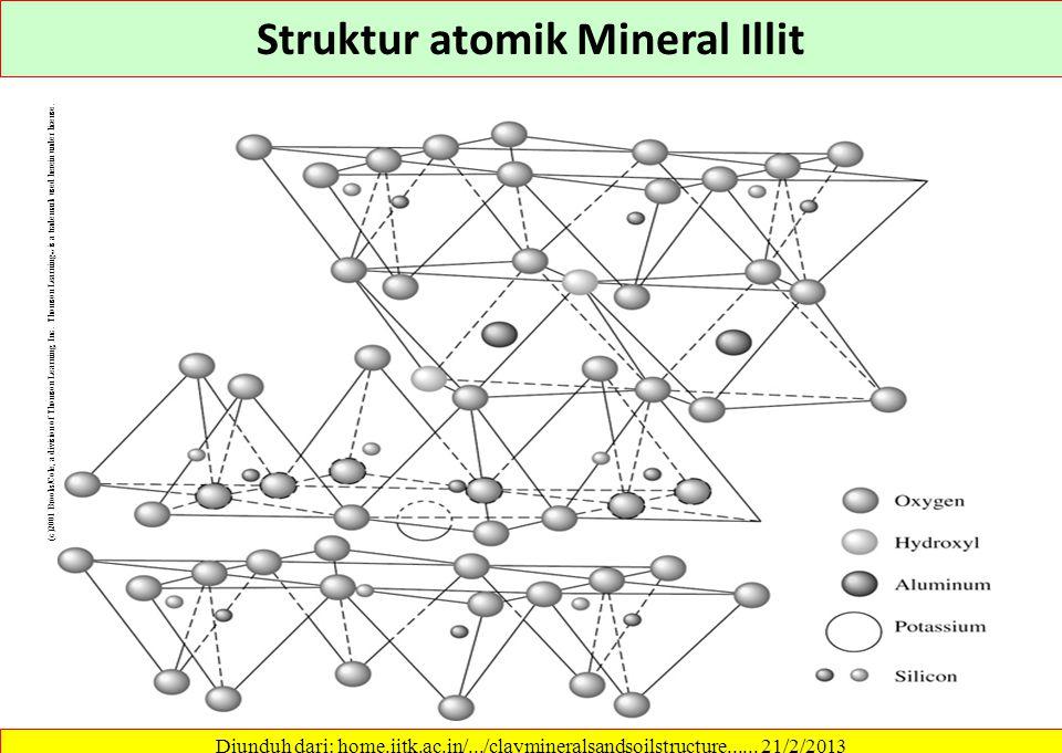 Rongga basalnya tetap 14 Å. Gibbsit atau brusit Diunduh dari: home.iitk.ac.in/.../claymineralsandsoilstructure...... 21/2/2013 Mineral Khlorit