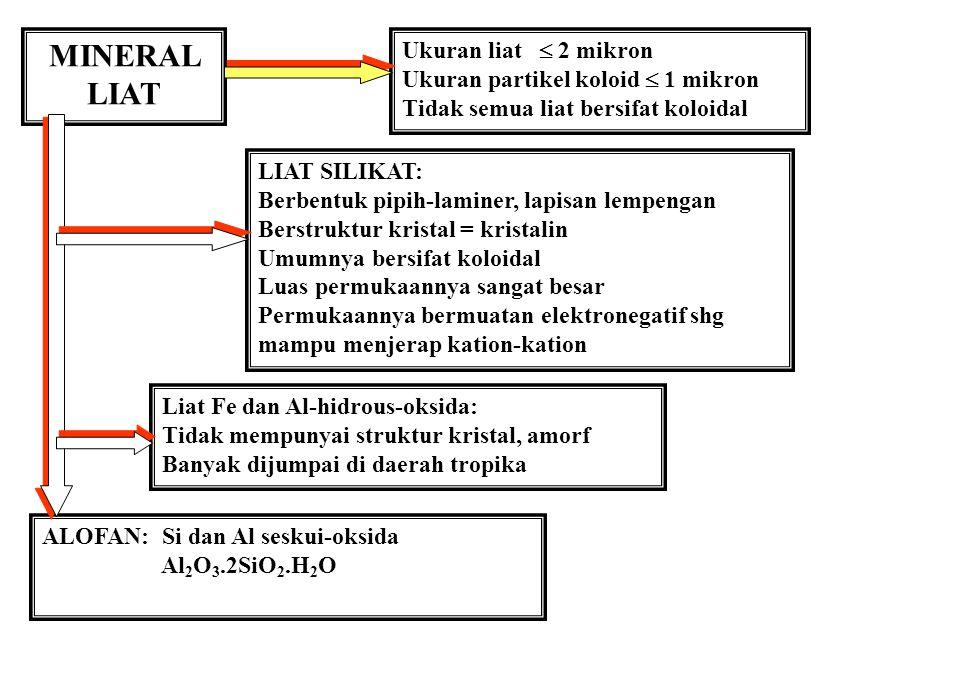 MINERALOGI LIAT SERISIT 1. Adalah Muskovit yg bersisik halus dg formulanya K2O. 3Al2O3. 6SiO2. 2H2O atau KAl2(AlSi3)O10(OH)2 2.Mg menggantikan sebagia
