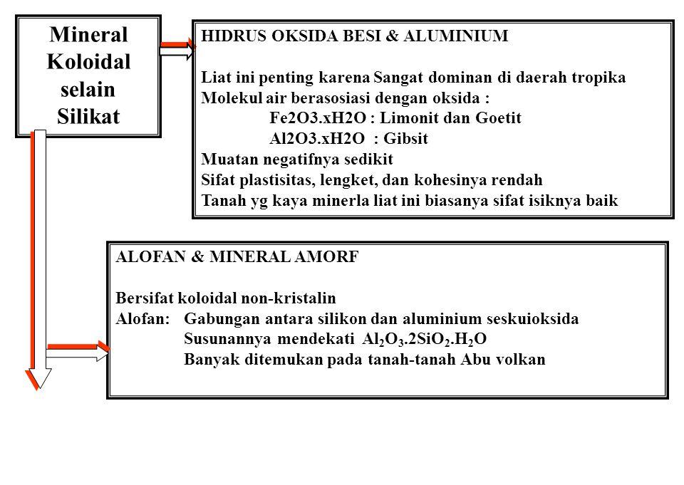 Ciri-ciri Tipe Liat Montmorilonit Ilit Kaolinit Ukuran (mikron)0.01 - 10.1 - 20.1 - 5 BentukSerpih tak menentu Serpih tak menentu Heksagonal Permukaan