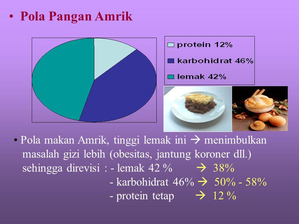 Pola Pangan Amrik Pola makan Amrik, tinggi lemak ini  menimbulkan masalah gizi lebih (obesitas, jantung koroner dll.) sehingga direvisi : - lemak 42