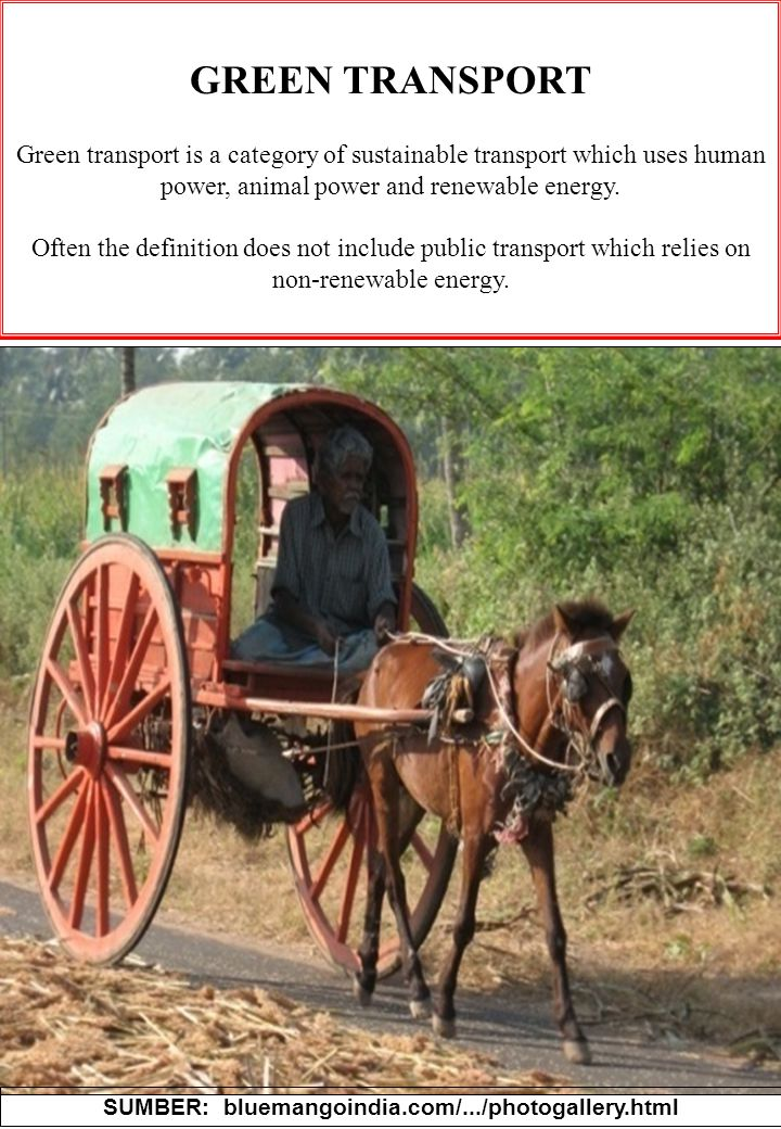 20 GREEN TRANSPORT Green transport is a category of sustainable transport which uses human power, animal power and renewable energy.