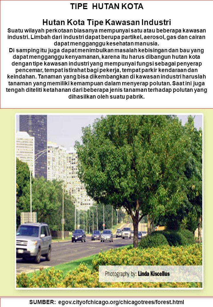 87 TIPE HUTAN KOTA Hutan Kota Tipe Kawasan Industri Suatu wilayah perkotaan biasanya mempunyai satu atau beberapa kawasan industri. Limbah dari indust