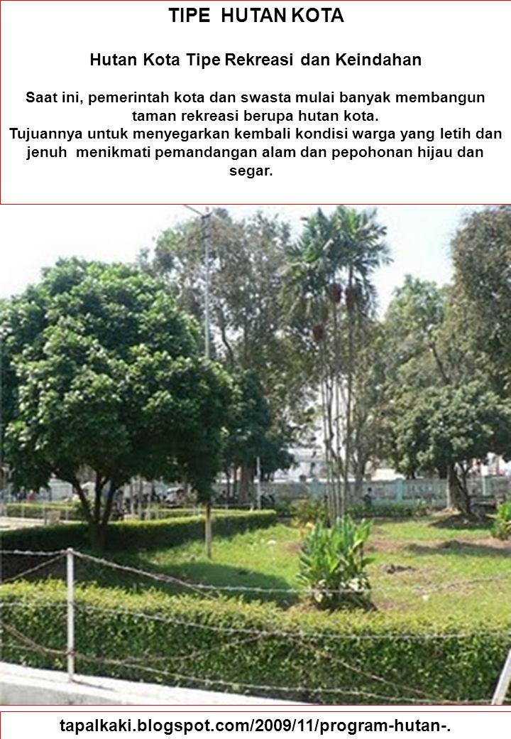 88 TIPE HUTAN KOTA Hutan Kota Tipe Rekreasi dan Keindahan Saat ini, pemerintah kota dan swasta mulai banyak membangun taman rekreasi berupa hutan kota