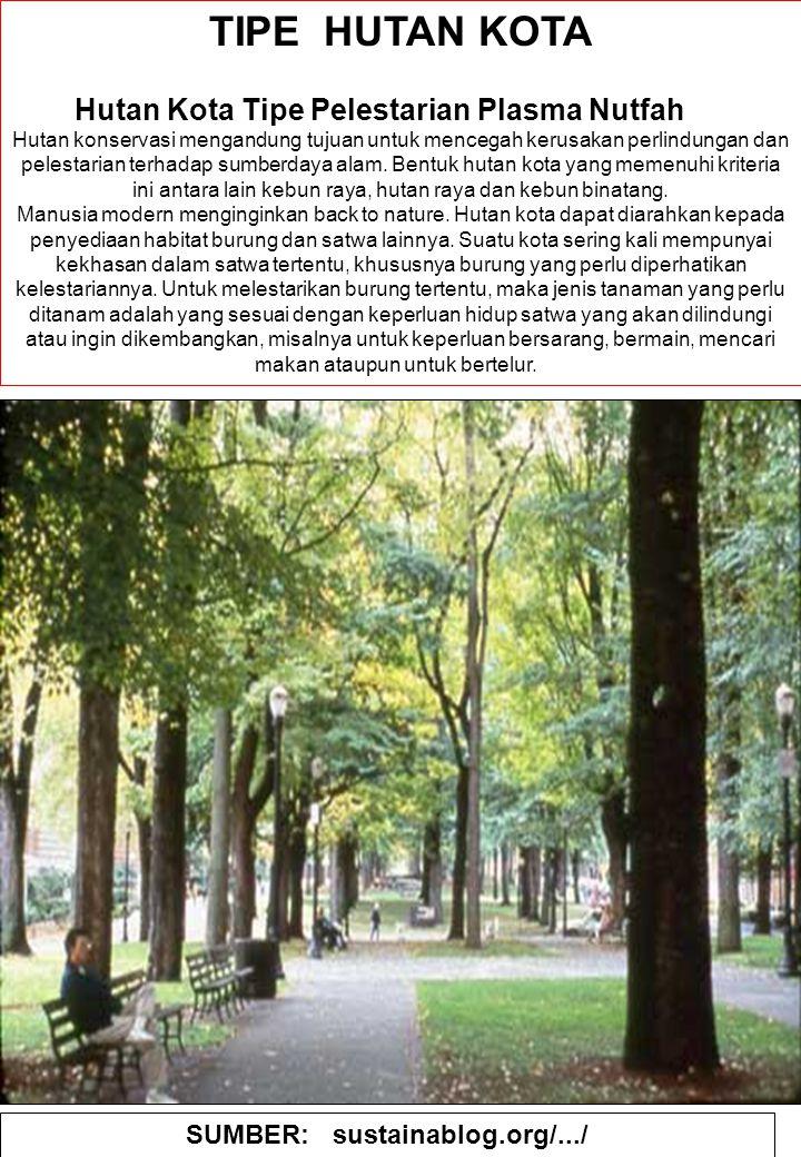 89 TIPE HUTAN KOTA Hutan Kota Tipe Pelestarian Plasma Nutfah Hutan konservasi mengandung tujuan untuk mencegah kerusakan perlindungan dan pelestarian