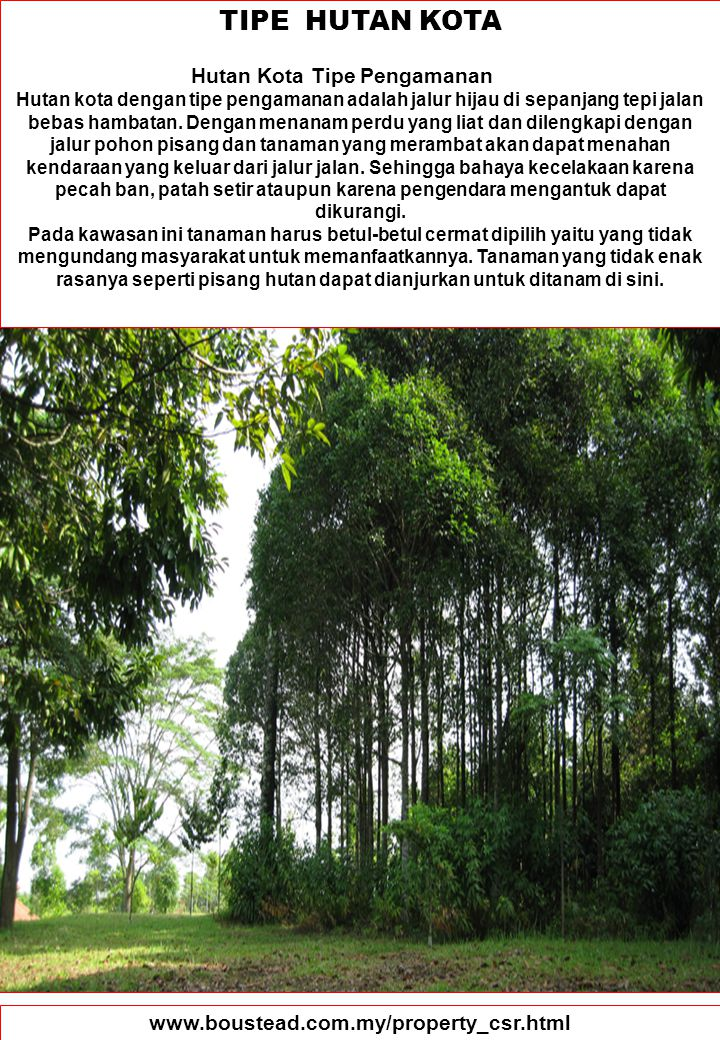 91 TIPE HUTAN KOTA Hutan Kota Tipe Pengamanan Hutan kota dengan tipe pengamanan adalah jalur hijau di sepanjang tepi jalan bebas hambatan. Dengan mena