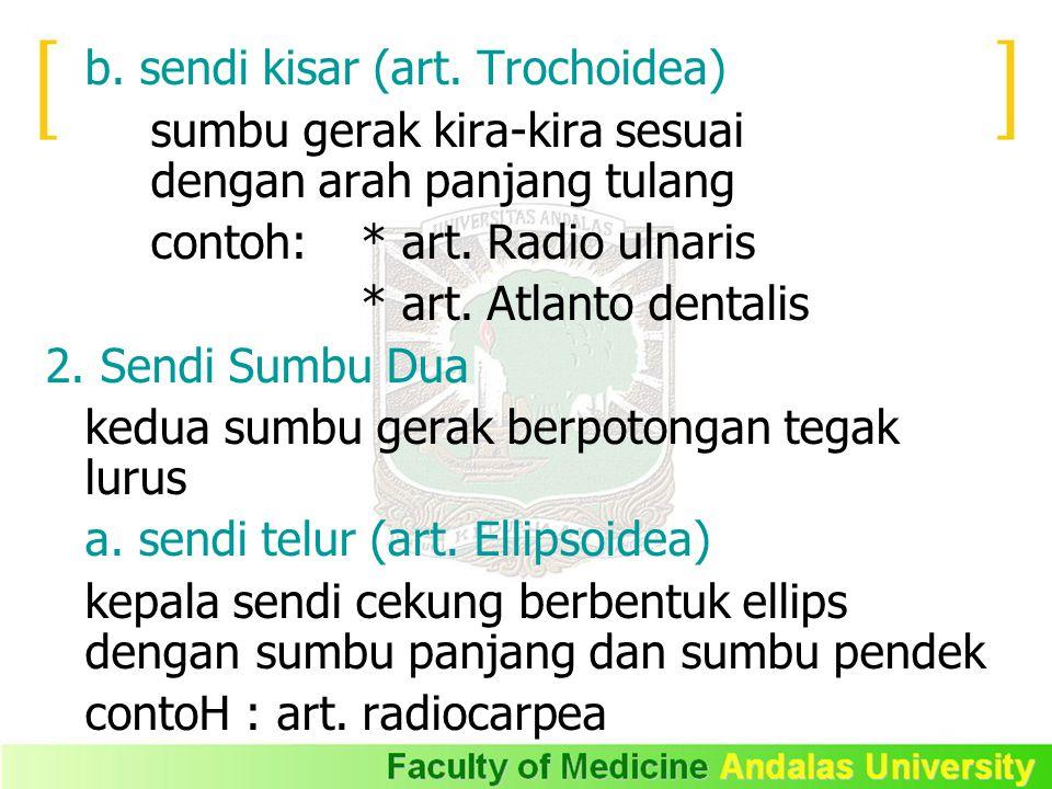 b. sendi kisar (art. Trochoidea) sumbu gerak kira-kira sesuai dengan arah panjang tulang contoh: * art. Radio ulnaris * art. Atlanto dentalis 2. Sendi