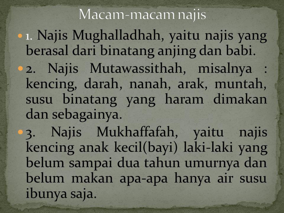1. Najis Mughalladhah, yaitu najis yang berasal dari binatang anjing dan babi. 2. Najis Mutawassithah, misalnya : kencing, darah, nanah, arak, muntah,