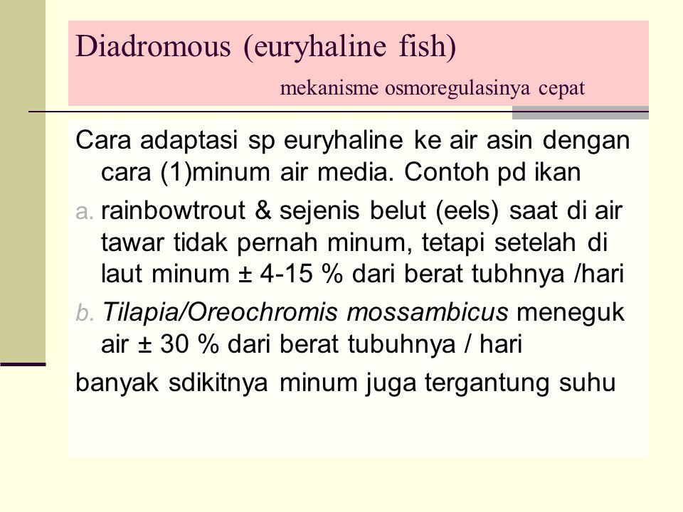 Diadromous (euryhaline fish) mekanisme osmoregulasinya cepat Cara adaptasi sp euryhaline ke air asin dengan cara (1)minum air media.