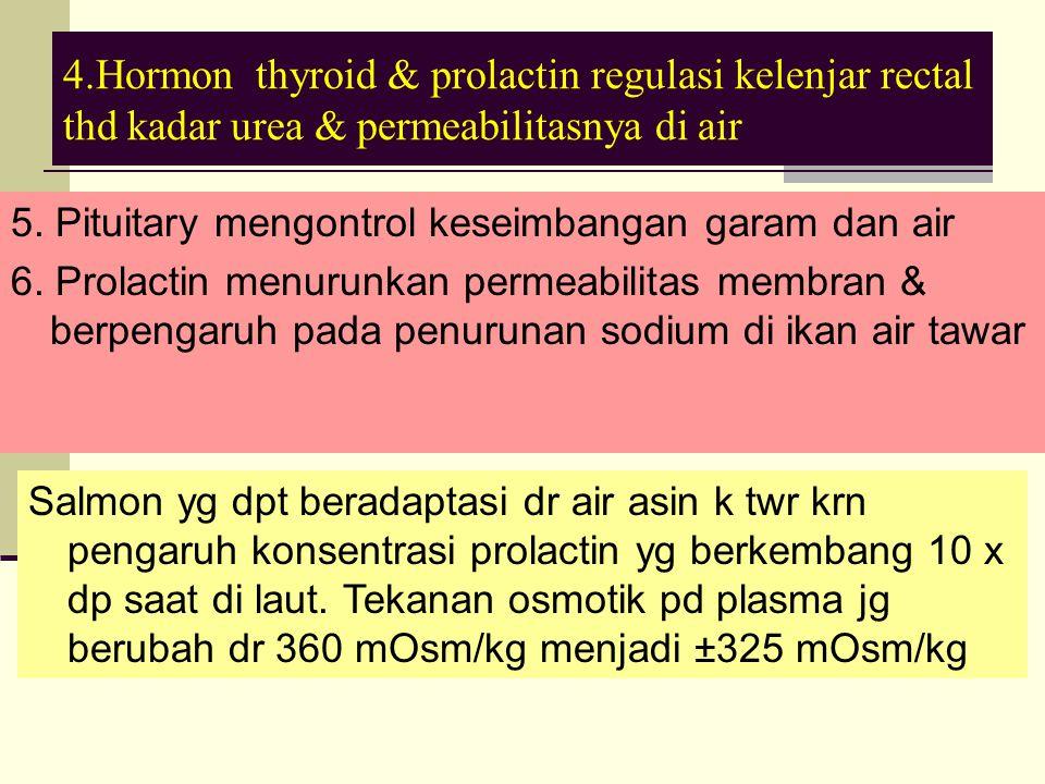 4.Hormon thyroid & prolactin regulasi kelenjar rectal thd kadar urea & permeabilitasnya di air 5.