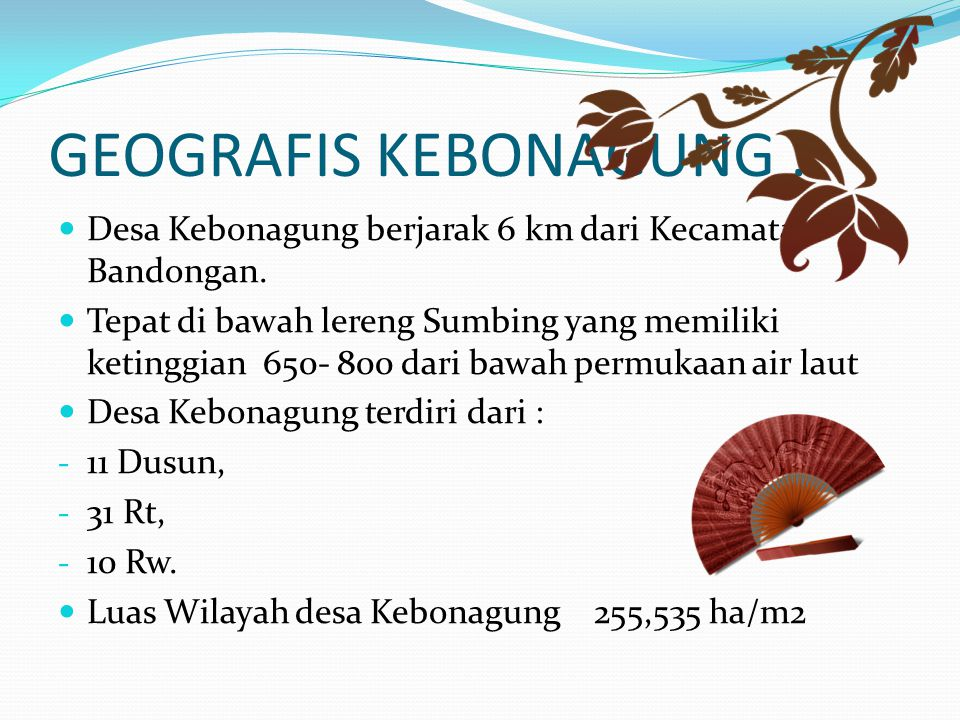 GEOGRAFIS KEBONAGUNG : Desa Kebonagung berjarak 6 km dari Kecamatan Bandongan. Tepat di bawah lereng Sumbing yang memiliki ketinggian 650- 800 dari ba
