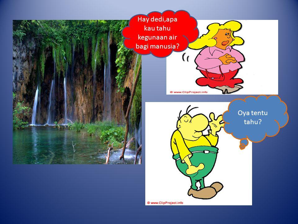 Hay dedi,apa kau tahu kegunaan air bagi manusia Oya tentu tahu