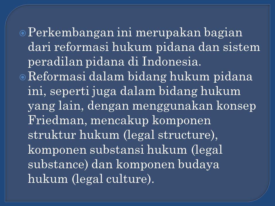  Perkembangan ini merupakan bagian dari reformasi hukum pidana dan sistem peradilan pidana di Indonesia.  Reformasi dalam bidang hukum pidana ini, s