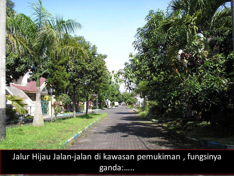 Jalur Hijau Jalan-jalan di kawasan pemukiman, fungsinya ganda:…..
