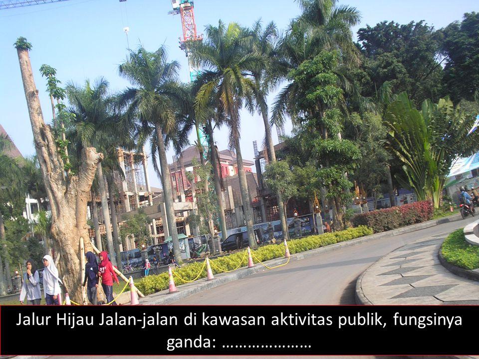 Jalur Hijau Jalan-jalan di kawasan aktivitas publik, fungsinya ganda: …………………