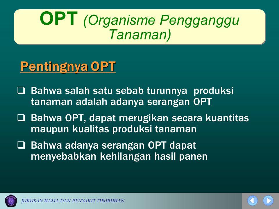 JURUSAN HAMA DAN PENYAKIT TUMBUHAN OPT (Organisme Pengganggu Tanaman) Pentingnya OPT  Bahwa salah satu sebab turunnya produksi tanaman adalah adanya
