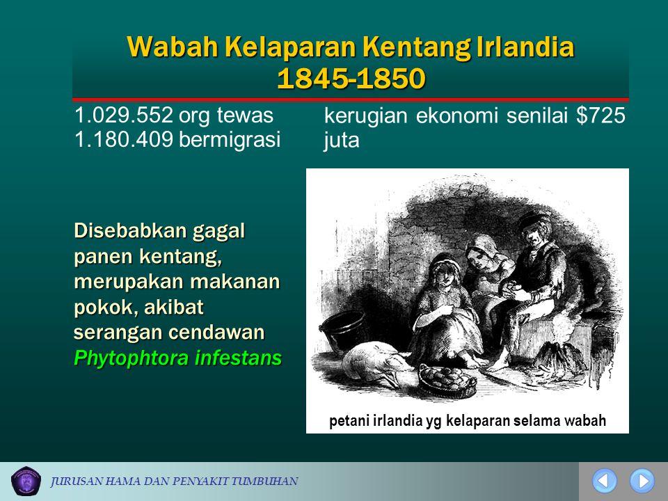 JURUSAN HAMA DAN PENYAKIT TUMBUHAN 1.029.552 org tewas 1.180.409 bermigrasi kerugian ekonomi senilai $725 juta Wabah Kelaparan Kentang Irlandia 1845-1