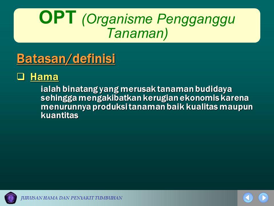 JURUSAN HAMA DAN PENYAKIT TUMBUHAN OPT (Organisme Pengganggu Tanaman)  Hama ialah binatang yang merusak tanaman budidaya sehingga mengakibatkan kerug