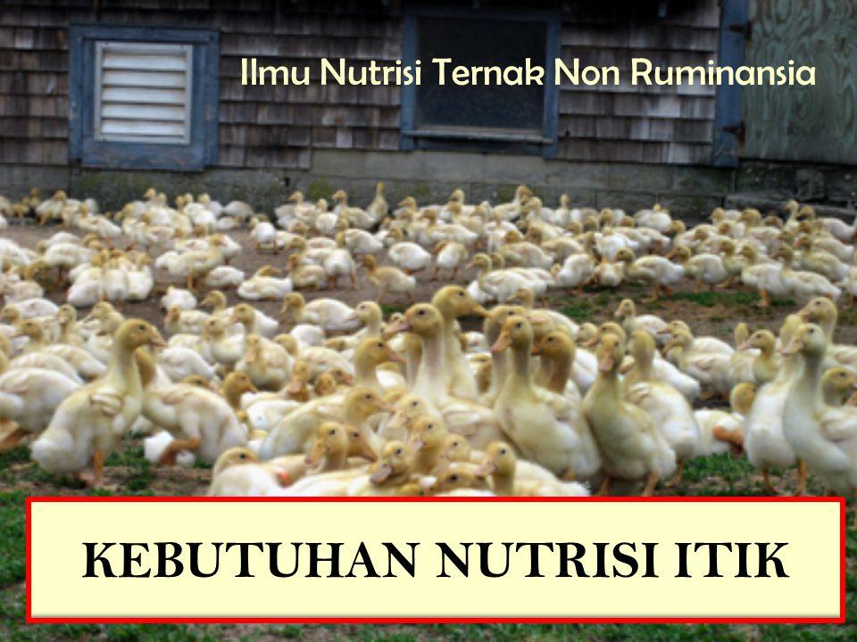 Itik Seperti Juga Ayam Hanya Mempunyai Sedikit Atau Sama Sekali Tidak Mempunyai Kemampuan Untuk Menggunakan Serat Kasar DalamMakanan Peningkatan Kerapatan Energi Akan Menurunkan Konsumsi Dan Memperbaiki Konversi Pakan.