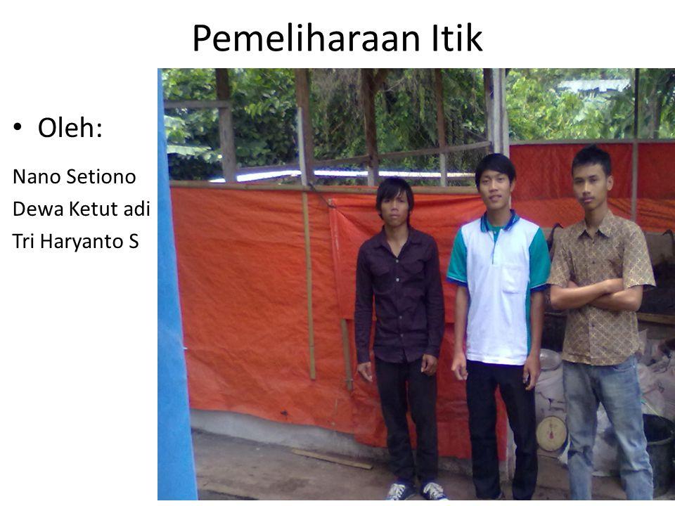 Pemeliharaan Itik Oleh: Nano Setiono Dewa Ketut adi Tri Haryanto S