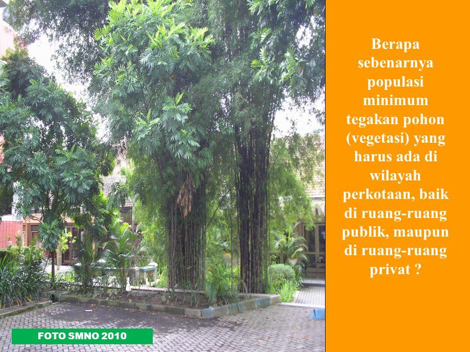Berapa sebenarnya populasi minimum tegakan pohon (vegetasi) yang harus ada di wilayah perkotaan, baik di ruang-ruang publik, maupun di ruang-ruang pri