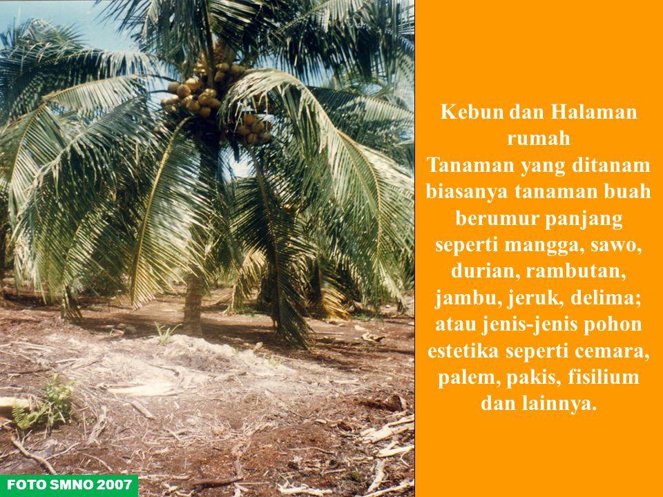Kebun dan Halaman rumah Tanaman yang ditanam biasanya tanaman buah berumur panjang seperti mangga, sawo, durian, rambutan, jambu, jeruk, delima; atau