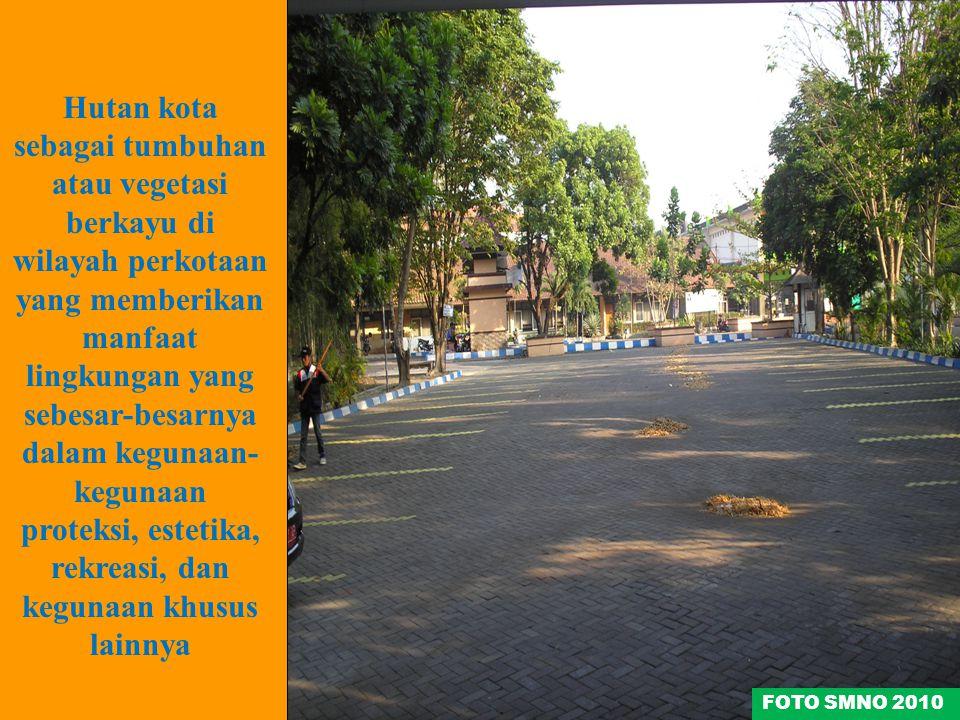 Hutan kota sebagai tumbuhan atau vegetasi berkayu di wilayah perkotaan yang memberikan manfaat lingkungan yang sebesar-besarnya dalam kegunaan- keguna