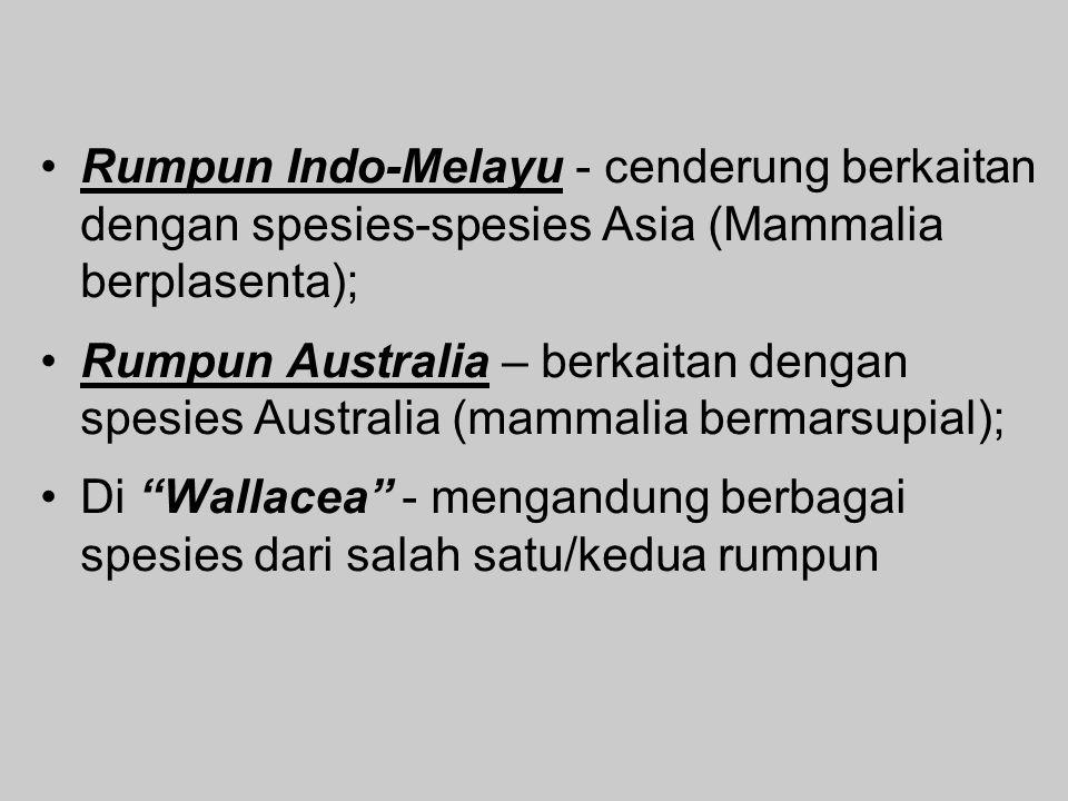 Rumpun Indo-Melayu - cenderung berkaitan dengan spesies-spesies Asia (Mammalia berplasenta); Rumpun Australia – berkaitan dengan spesies Australia (mammalia bermarsupial); Di Wallacea - mengandung berbagai spesies dari salah satu/kedua rumpun