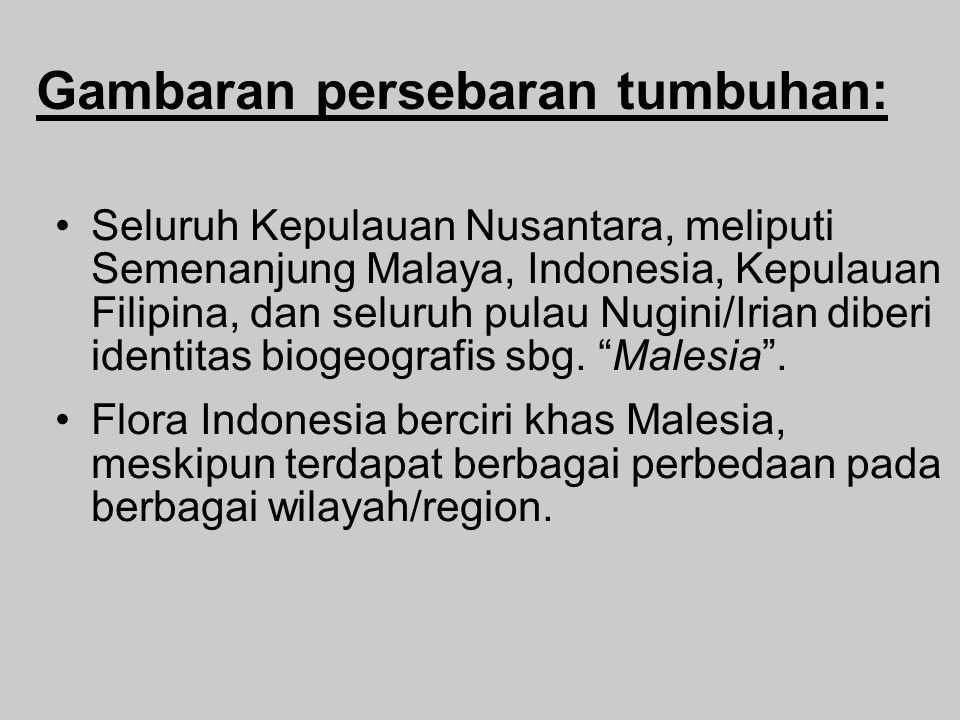 Gambaran persebaran tumbuhan: Seluruh Kepulauan Nusantara, meliputi Semenanjung Malaya, Indonesia, Kepulauan Filipina, dan seluruh pulau Nugini/Irian diberi identitas biogeografis sbg.