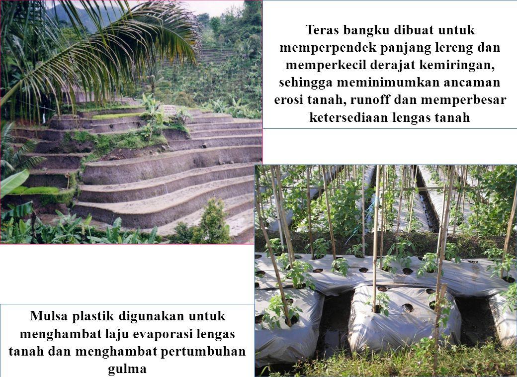 Teras bangku dibuat untuk memperpendek panjang lereng dan memperkecil derajat kemiringan, sehingga meminimumkan ancaman erosi tanah, runoff dan memper